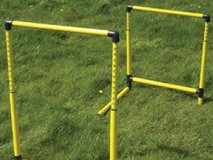 Diamond Easi Hurdle with adjustable height