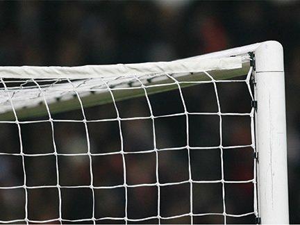Diamond full size goal net